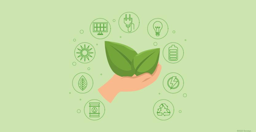Embalagens Sustentáveis: O que são e quais os benefícios ao investir